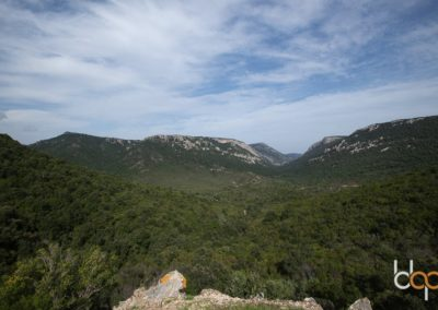 Sardinien Mare e Monti Tour Urzulei mit Blick auf das Supramonte Gebirge ©Matthias Lippstreu